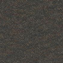 Pentz Premiere Carpet Tile Debut
