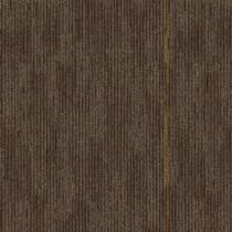 """Aladdin Commercial Unexpected Mix Carpet Tile Concur 24"""" x 24"""" Premium"""