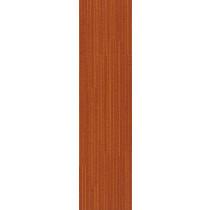 """Shaw Color Form Carpet Tile Blaze 9"""" x 36"""" Premium(45 sq ft/ctn)"""
