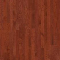 "Shaw Albright Oak 5"" x 3/8"" Engineered Cherry Builder"