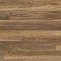 "MSI Glenridge Tawny Birch 6"" x 48"" Glue Down LVT"
