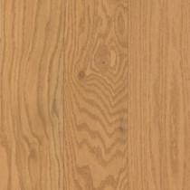 """Mohawk Terevina 3 1/4"""" x 3/4"""" Oak Solid Frontier Oak"""
