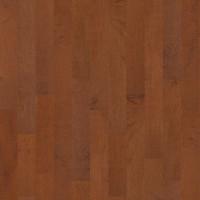 "Shaw Lakeside 5"" x 1/2"" Engineered Maple Nautilus Builder (26.01 sq ft/ctn)"