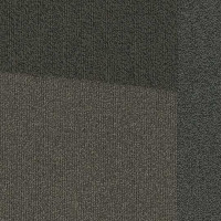 "Shaw Base Hexagon Carpet Tile Interact 24.9"" x 28.8"" x 14.4"" Builder(45 sq ft/ctn)"