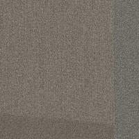 "Shaw Base Hexagon Carpet Tile Shift 24.9"" x 28.8"" x 14.4"" Builder(45 sq ft/ctn)"