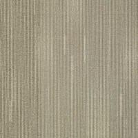 """Shaw Direction Carpet Tile Sight 24"""" x 24"""" Builder(48 sq ft/ctn)"""