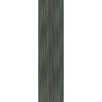 "Shaw Edinburgh Carpet Tile Broadford 12"" x 48"" Builder(48 sq ft/ctn)"