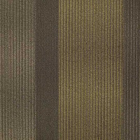 "Shaw Hybrid Carpet Tile Season 24"" x 24"" Builder(48 sq ft/ctn)"