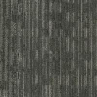 "Shaw Natural Form Carpet Tile Echo 24"" x 24"" Builder(48 sq ft/ctn)"