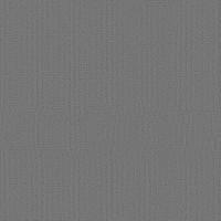 "Shaw Tru Colors Tile Grey Metal 24"" x 24"" Builder(48 sq ft/ctn)"