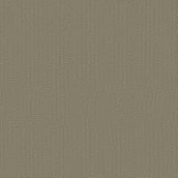 """Shaw Tru Colors Tile Lichen 24"""" x 24"""" Builder(48 sq ft/ctn)"""