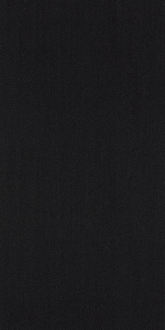Shaw Colour Plank Tile Black