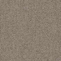 "Shaw Belong Carpet Tile Greige 24"" x 24"" Builder(48 sq ft/ctn)"
