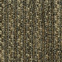 Pentz Revolution Carpet Tile Transformation