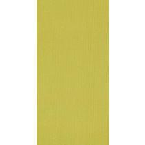 Shaw Colour Plank Tile Limelight