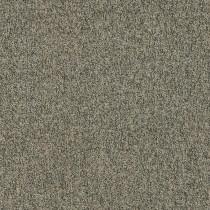 Shaw Homeroom V 3.0 Modular Tile Midterms