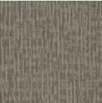 "Shaw Genius Carpet Tile Masterful 24"" x 24"" Builder(80 sq ft/ctn)"